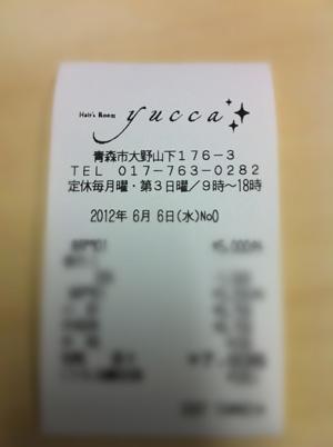 yucca3